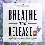 Support Your Emotional Health with Essential Oils