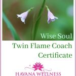Wise Soul Twin Flame Coach Certificate