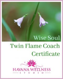 Twin Flame Coach Certificate