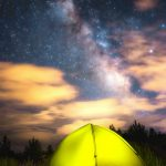 6 Essential Oils to bring to your next Camping Trip